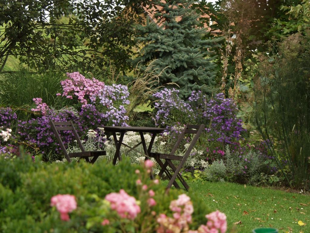 blühende Beete im Garten