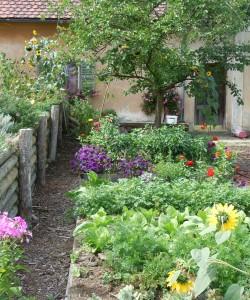 Holunderwunderwelt Bauerngarten