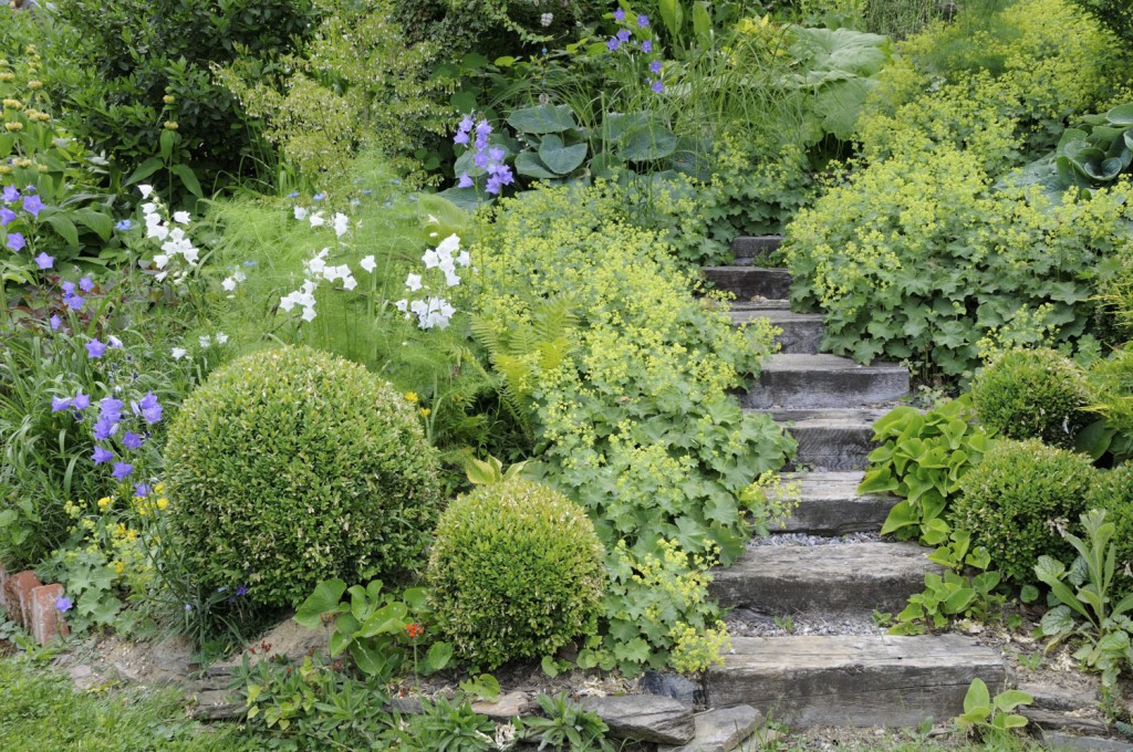 Gärten lebendig gestalten